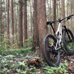 2020 SPECIALIZED STUMPJUMPER EXPERT CARBON 29 試走編